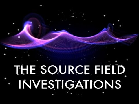 David Wilcock: The Source Field Investigations