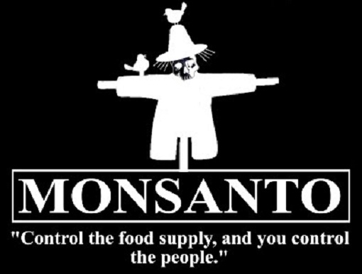 GMO's and the Mythe of Feeding the World