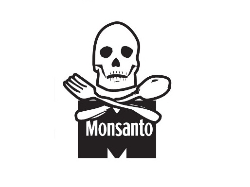 Nature Assassin Patent Trolls: Monsanto Top Brass & Organizational Structure