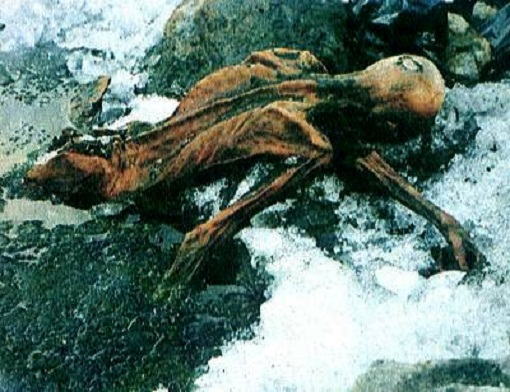 Oetzi the Iceman's Blood Is World's Oldest