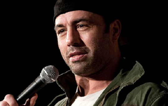 Joe Rogan and The American Ideal