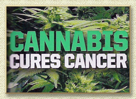Marijuana And Cancer: Scientists Find Cannabis Compound Stops Metastasis In Aggressive Cancers