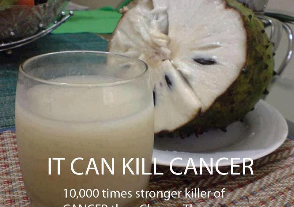 Cancer Killer: Sour Sop Fruit 10,000 Times Stronger Than Chemo-Therapy