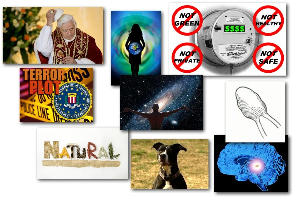 February 15, 2013 – Decrypted Matrix Radio: No Smart Meters, Pineal Gland Health, Spiritual Habits, Pope Resigns, Awareness Conference
