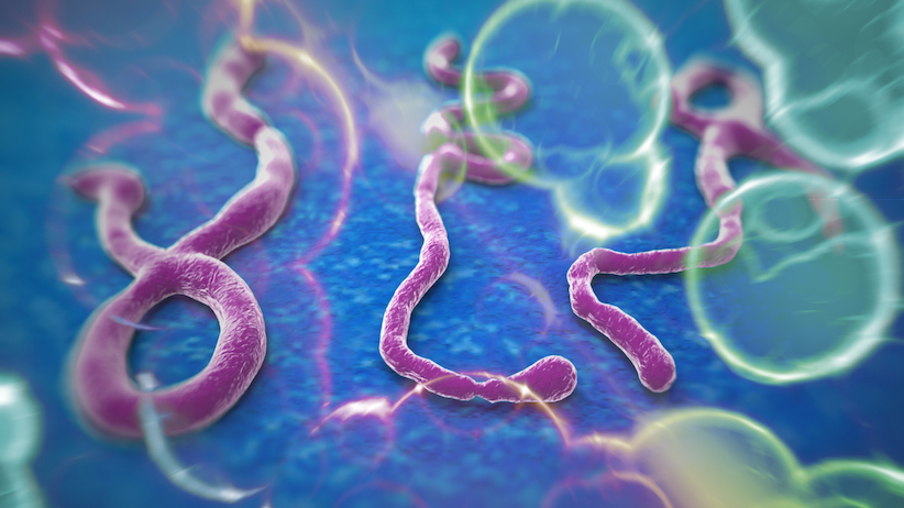 USA Sees First Ebola Patient Zero In Dallas TX