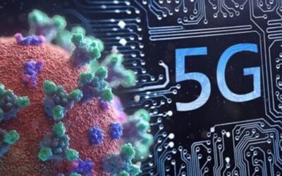 5G Facts Breakdown – Independent Research